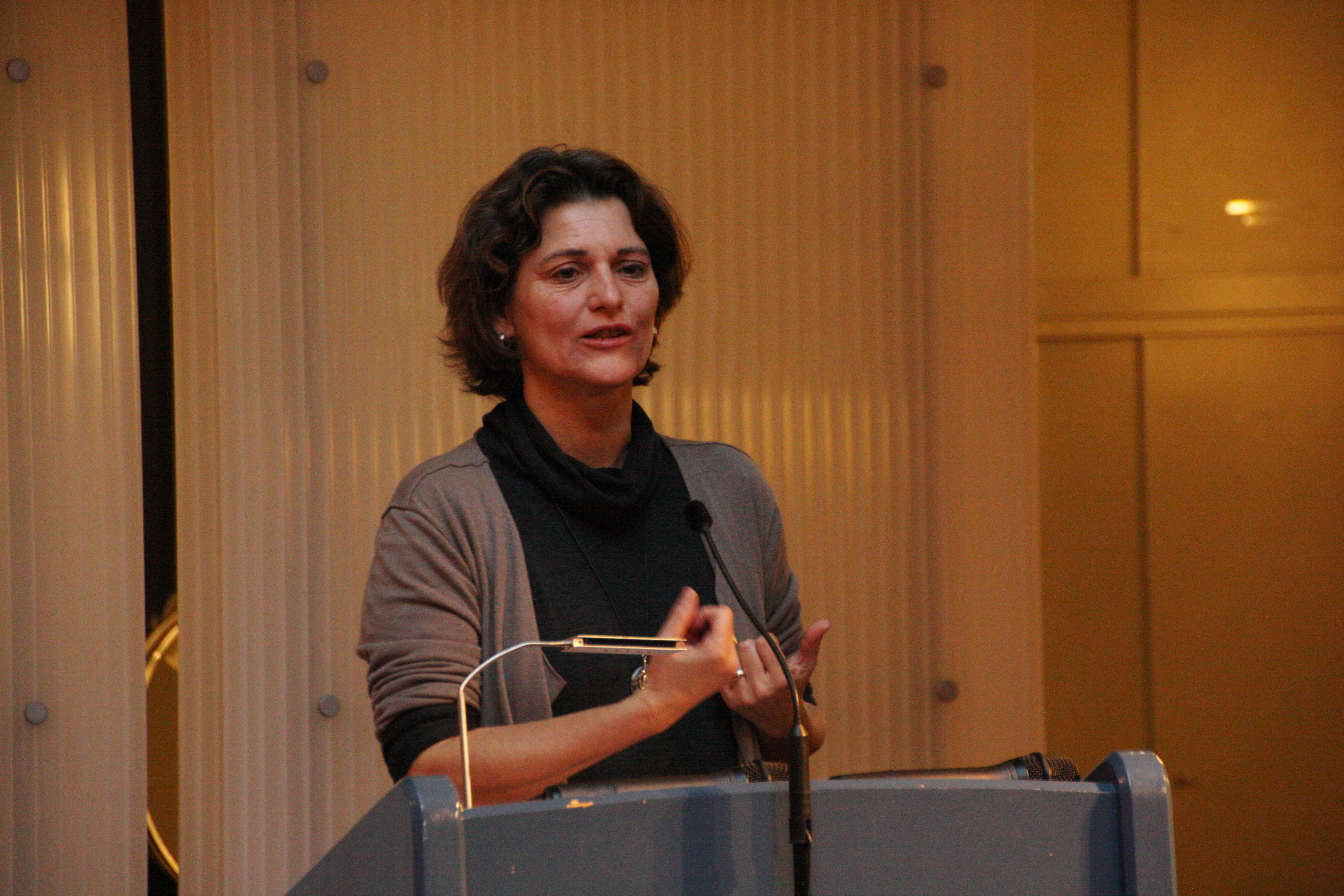 Vizepräsidentin des Landtags von Baden-Württemberg Frau Lösch sprach ein Grusswort.